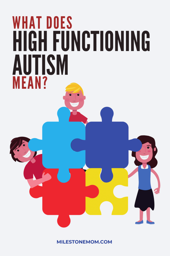 What Does High Functioning Autism Mean