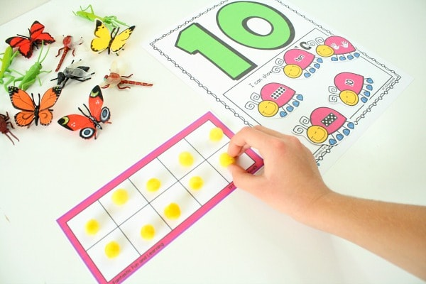 insect counting mats